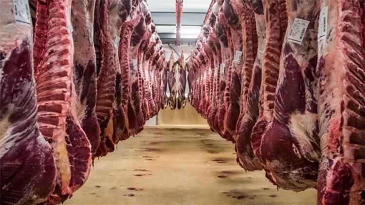 اسعار اللحوم والدواجن والاسماك اليوم السبت 18 5 2019 في مصر اخر تحديث