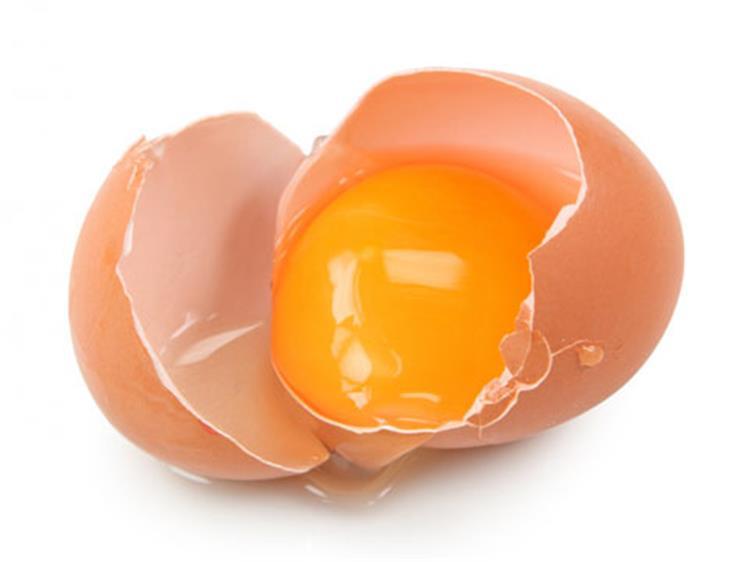 فوائد البيض البلدي يقلل مستوى الكوليسترول الضار وينقص الوزن