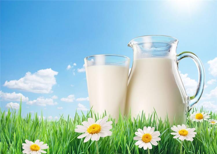 جدول السعرات الحرارية فى الحليب بكل أنواعه