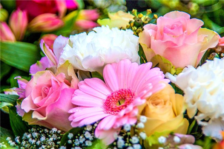 في شهر المرأة تعرفي على بوكيه الورد المناسب لشخصيتك
