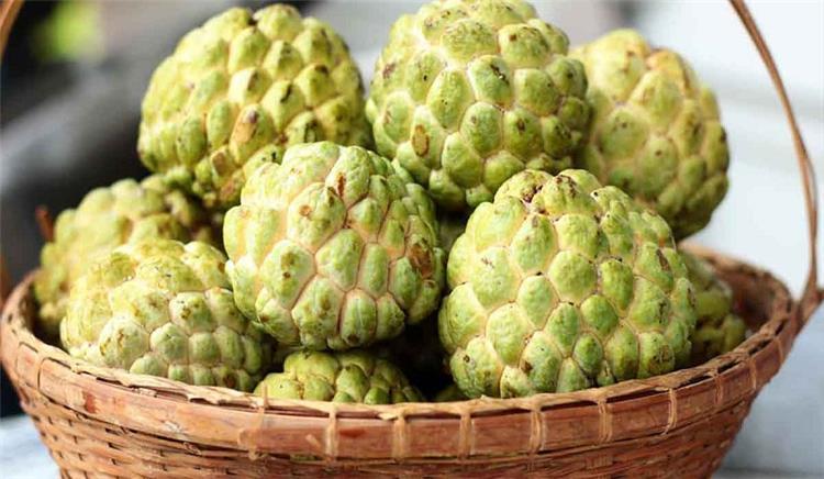 10 فوائد مذهلة لفاكهة الخرمش أبرزها محاربة السرطان