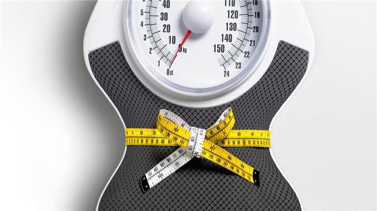 نظام غذائي لتثبيت الوزن بعد الدايت والحفاظ على الرشاقة