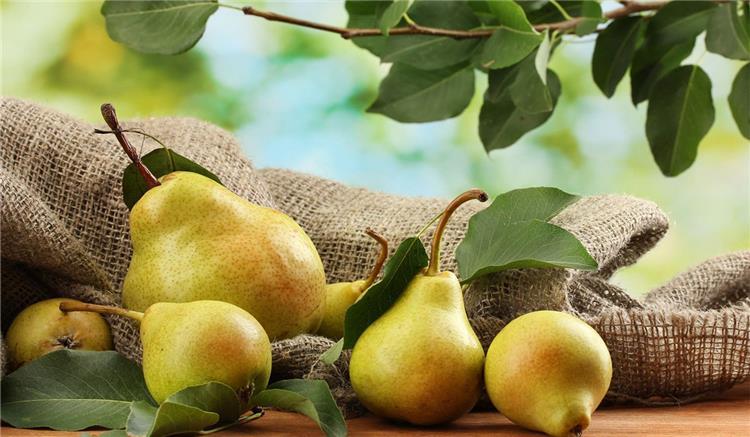 فوائد فاكهة الكمثرى تخفض الوزن وتحصن القلب