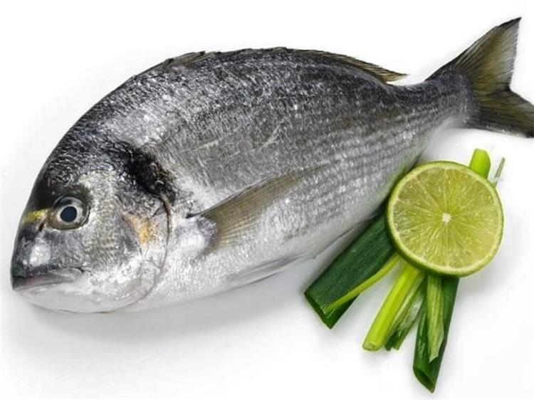 فوائد سمك الدنيس لإنقاص الوزن