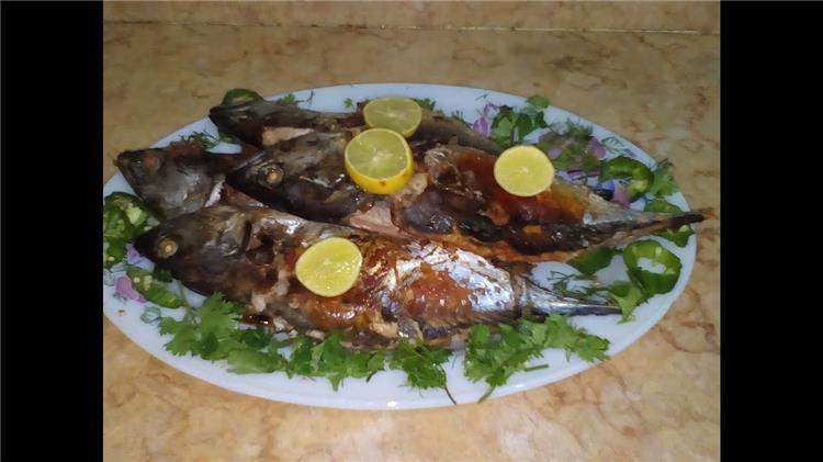 منيو غداء اليوم طريقة عمل سمك التونة في الفرن وارز الصيادية