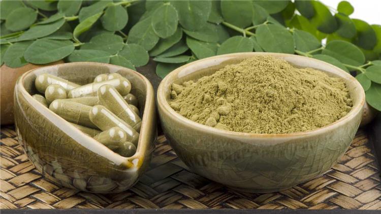 نبتة المورينجا مكمل غذائي وعلاج تعرفي عليها