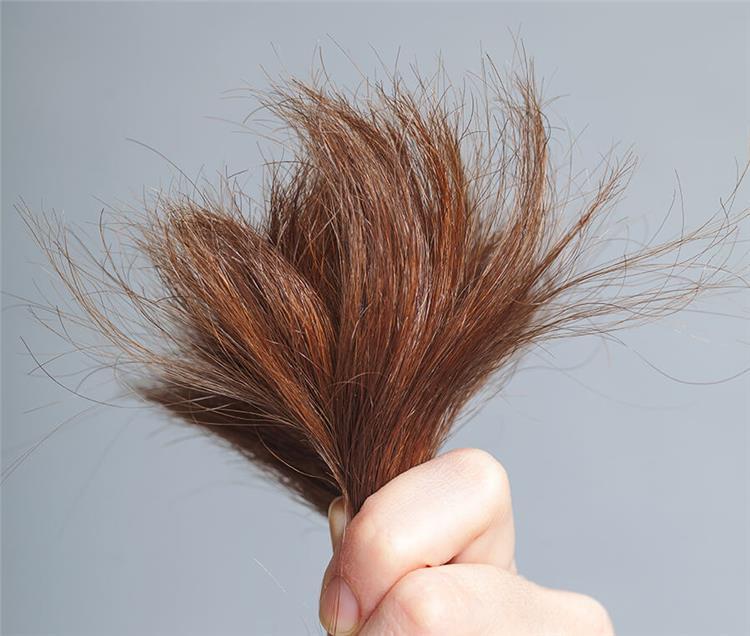 5 أسباب لتقصف وتلف الشعر
