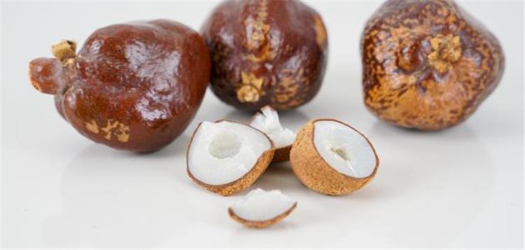 فوائد ثمار الدوم وطريقة أكله