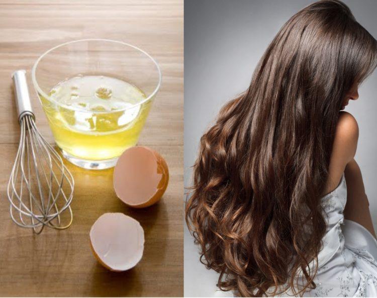 فوائد البيض لتطويل الشعر