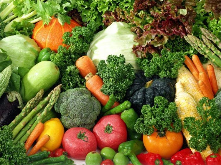 اسعار الخضروات والفاكهة اليوم الاربعاء 9 1 2019 في مصر اخر تحديث