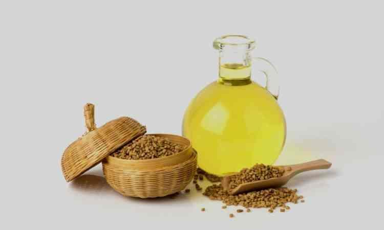 كيفية استخدام زيت الحلبة للعناية بالبشرة وتسمين الخدود وتكبير الثدي