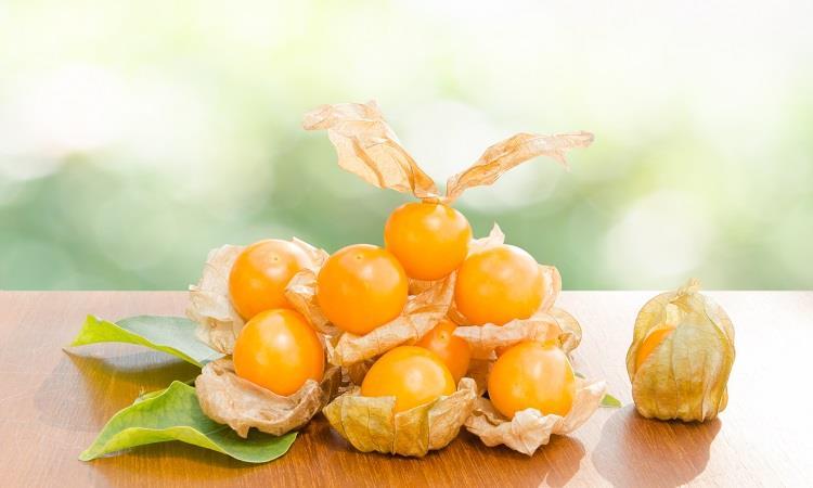 فوائد الحرنكش للتخسيس فاكهة مثالية في الرجيم