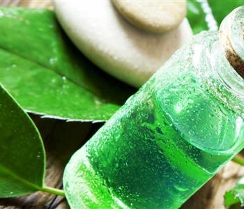 استخدامات زيت شجرة الشاي المذهلة
