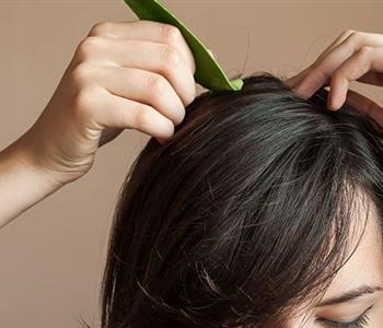 3 وصفات طبيعية بالصبار لحل جميع مشاكل الشعر