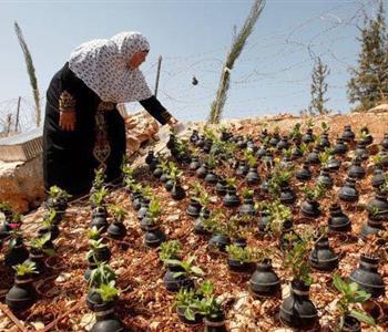 فلسطينية تمنح الورود حياة داخل قنابل الموت.. بعد مقتل ابنها