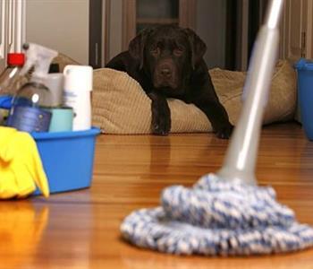 وصفات هلباوى للتنظيف سهلة ومضمونة النتائج