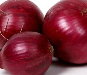 فوائد قشر البصل واستخداماته